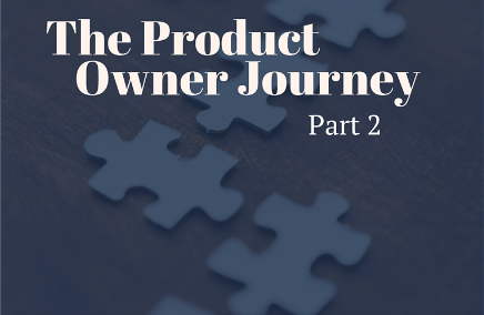 The Product Owner Journey, Part2: Mitigation Strategies